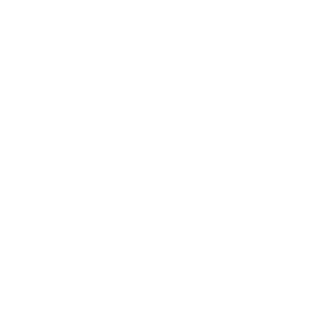Urnes del Referèndum